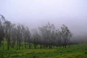 road trips from Bangalore