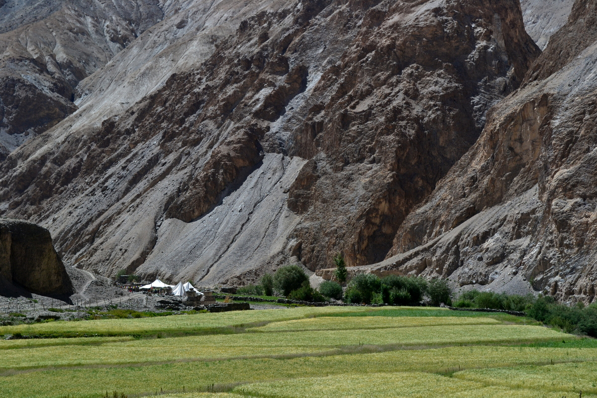 Markha river Valley Trek, Ladakh