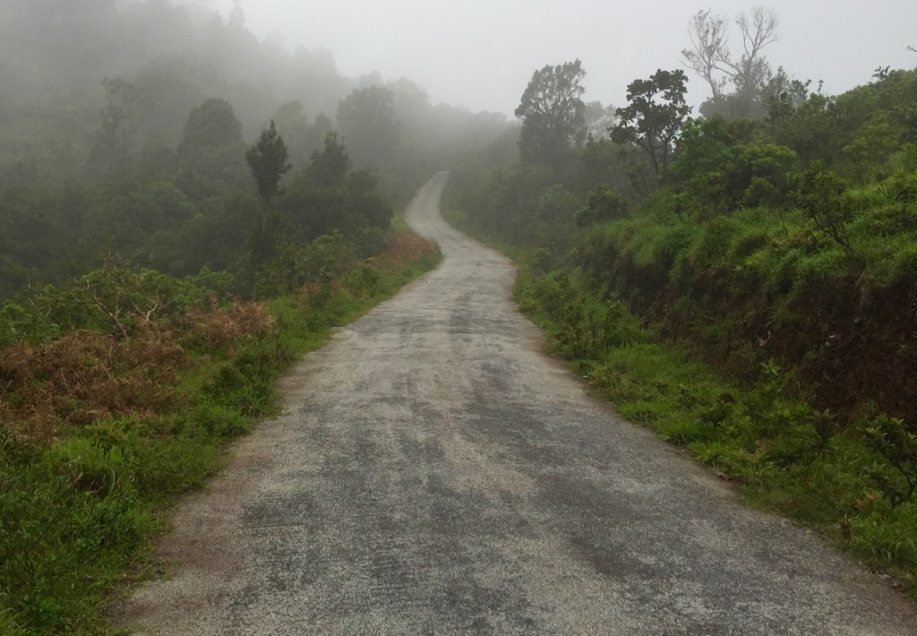Charming Chikmagalur