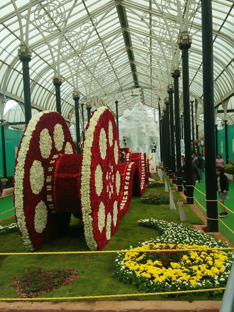 Lalbagh flower